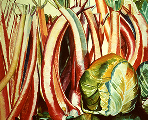 Rhubarb, unfinished 1974 by Jocelyn Cohen