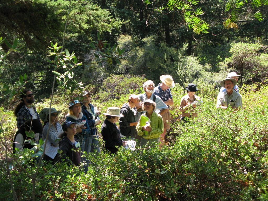 Field class at East bay Regional Parks Botanic Garden, the largest Californian native garden in northern California.
