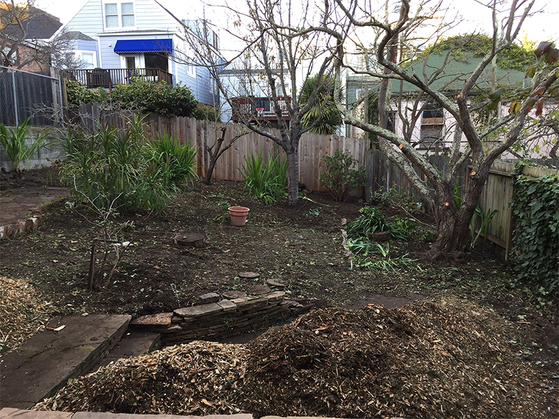 After cleanup and pruning, preparation to mulch the landscape